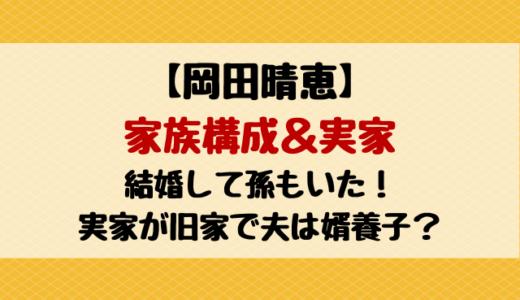 岡田晴恵の夫は婿養子で孫もいた!家族構成&実家を紹介!