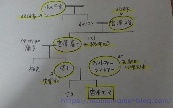 宮澤エマの家系図に驚愕!祖父や父が凄すぎる家族構成を紹介