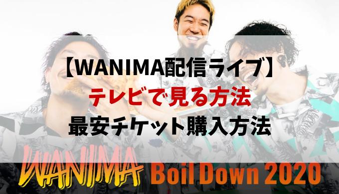 WANIMA配信ライブ視聴方法と最安チケット!テレビで見る方法も紹介!