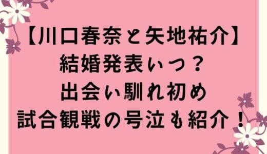 川口春奈と矢地祐介の結婚発表いつ?出会い馴れ初めや試合観戦の号泣を紹介!
